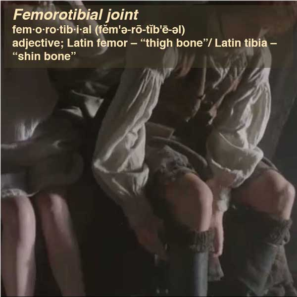 Femorotibial Joint