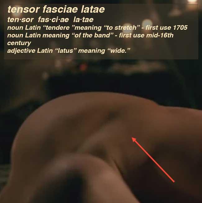 Fun Fact: tensor fasciae latae – Outlander Anatomy