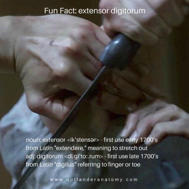 dougal mackenzie – Outlander Anatomy