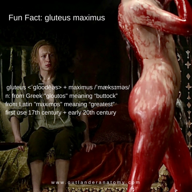 example of gluteus maximus from Outlander TV show