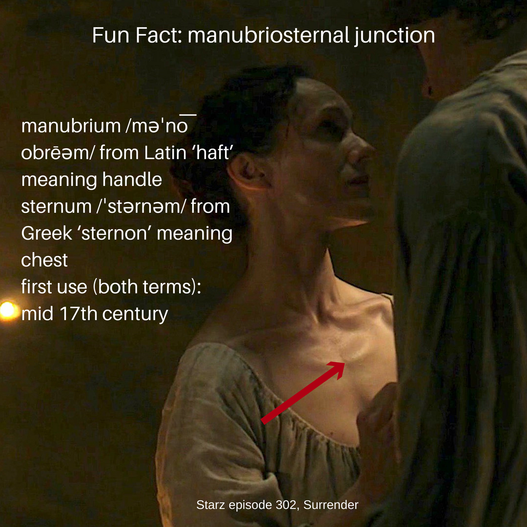 Fun Facts – Page 2 – Outlander Anatomy